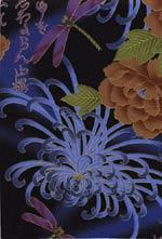 Akino blue