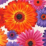 Lakehouse Fabrics multi